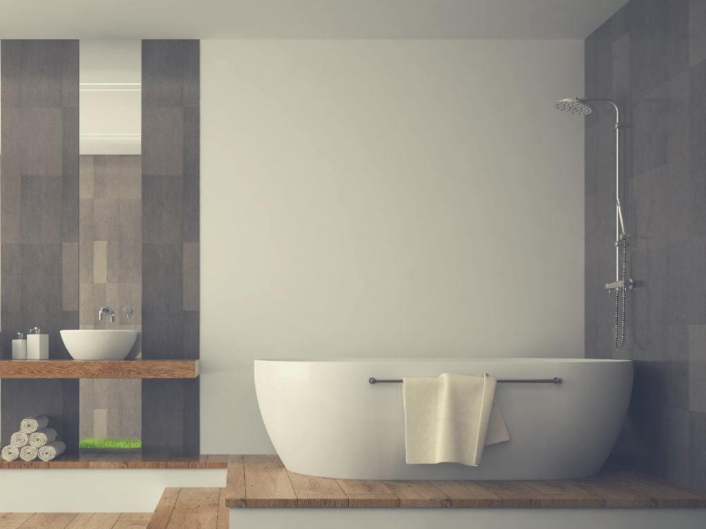 Bathtub And Dual Shower Head