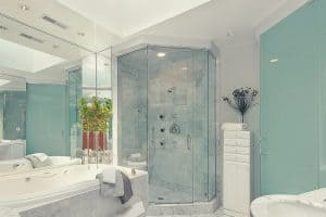 Bathroom With Showering System and Bathtub
