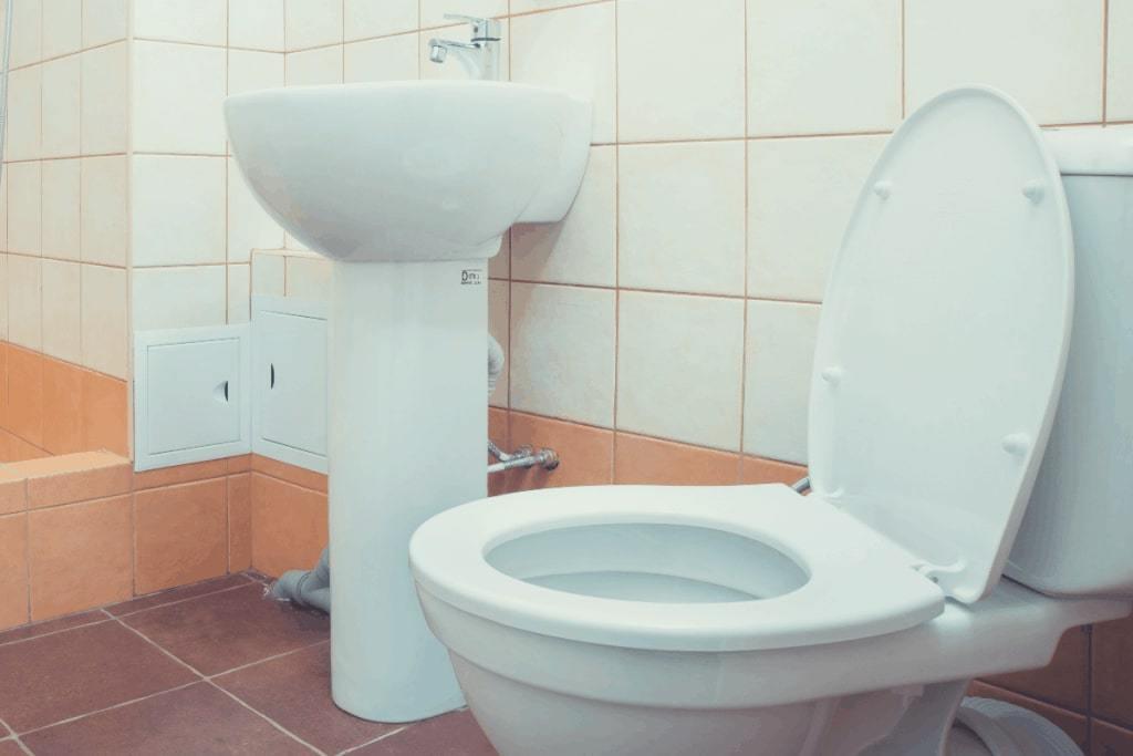 Bathroom Toilet Seat